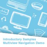 Multiview Navigation Demo (C++)